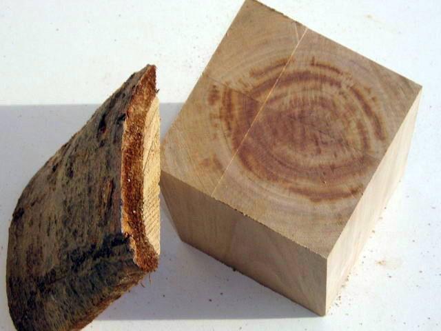 Identification de bois ? Bois01