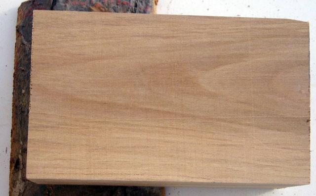 Identification de bois ? Bois02